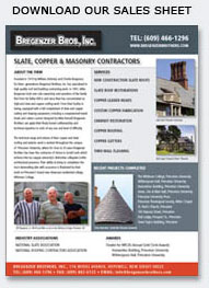 Image linked to article about the Bregenzer Brothers in Princeton Business Journal